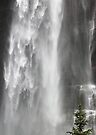 Bridal Veil Falls, Colorado by Tamas Bakos