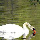 Swan by Jan  Tribe