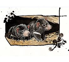 Baby devils in the den Photographic Print