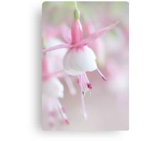 Soft Fuchsia Canvas Print