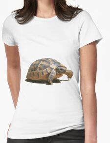 Portrait of a Young Wild Tortoise Isolated Womens Fitted T-Shirt