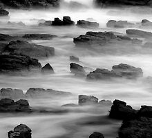 Soft foreshore by Garth Smith