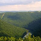Cheat River, Way Down Below by Abbey Walls