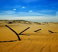 Metal shadows, Stockton Beach, NSW Australia by TheSpaniard