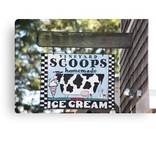 Scoops Canvas Print