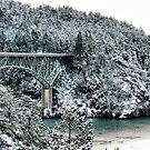 Snowbridge Two by Rick Lawler