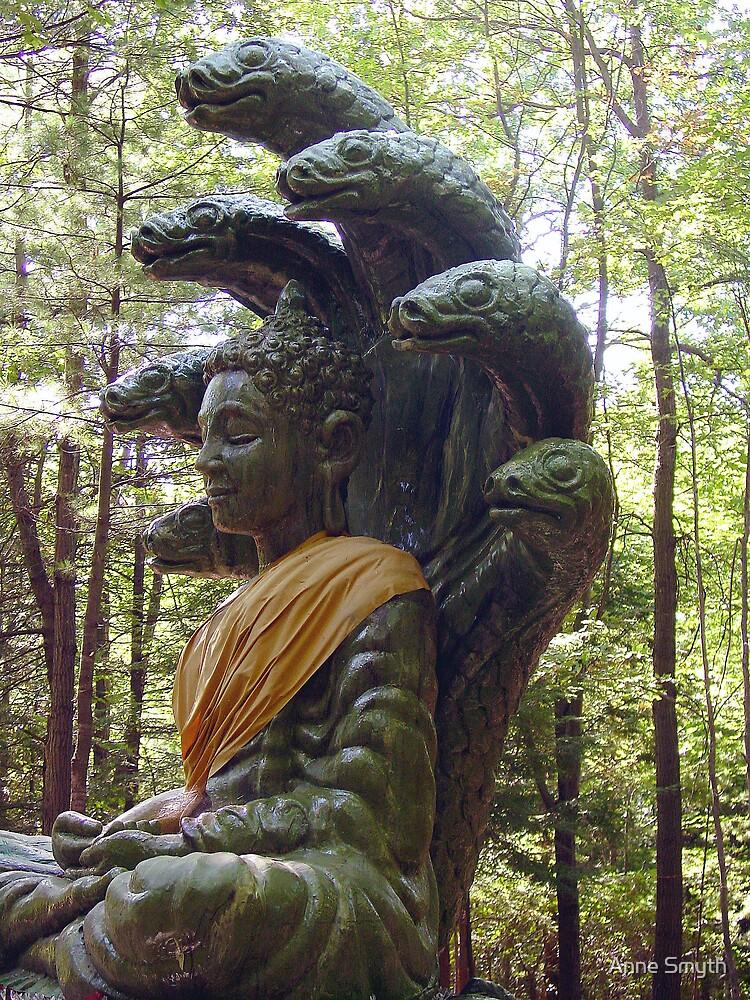 Buddha by Anne Smyth