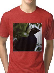 Perched Peacock in Shade Tri-blend T-Shirt