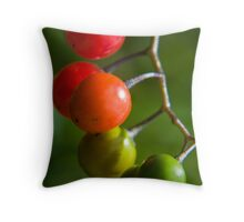 time in colour Throw Pillow