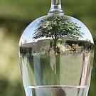 Garden In A Glass by Kelly Cavanaugh