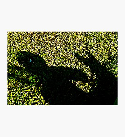 child and dog shadow play Photographic Print