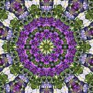 Kaleidoscope Dreams by Marie Sharp