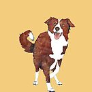 Red Border Collie  by Barbara Applegate
