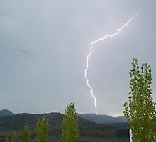 Lightning by Marie Watt