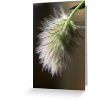I love this smell  (from wild flowers collection) Greeting Card