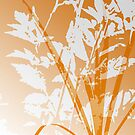Team Orange by Ruth Palmer