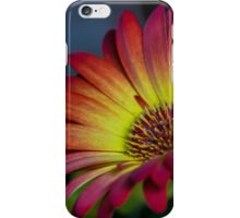 Red Yellow Flower iPhone Case/Skin