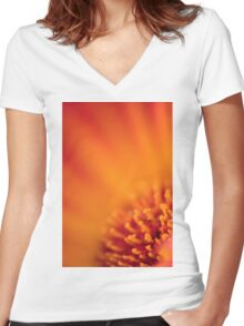 Too Close to the Sun Women's Fitted V-Neck T-Shirt