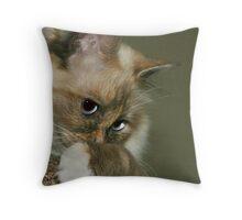 Kia the Burman Throw Pillow