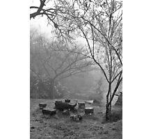 Tea and the Mountain Photographic Print