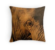 Elephant close up Throw Pillow
