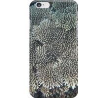 coral reefs ginger iPhone Case/Skin