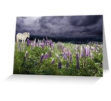 A Childs Dream of Lupine Fields Greeting Card