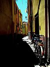 Bicycle by Mojca Savicki