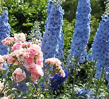 Delphiniums and Rose clusters by MarianBendeth