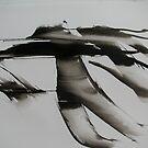 wind walking by evon ski