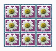 Daisies and Blocks by Nativeexpress