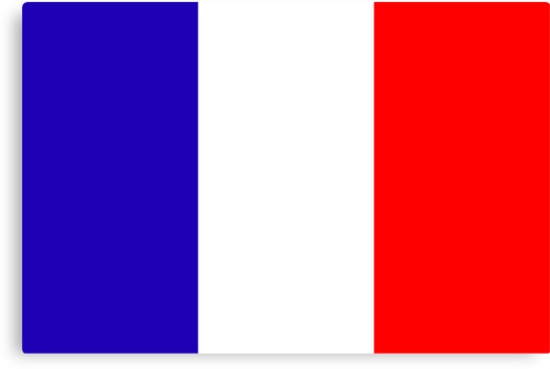France, national id by AravindTeki