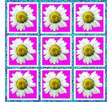 Daisies and Blocks Photographic Print