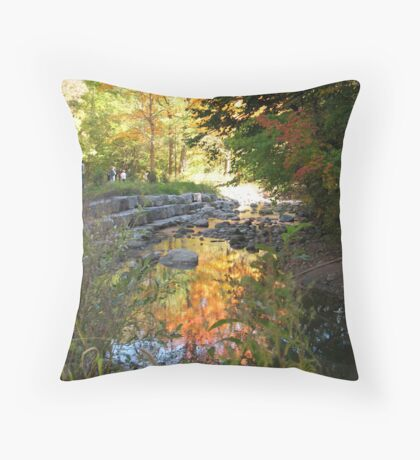 reflective waters in the heart of Autumn Throw Pillow