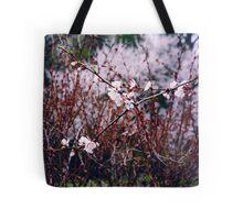 Sakura Branch Blossoming Out  Tote Bag