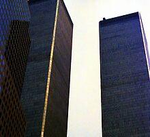 Twin Towers by Wayne Gerard Trotman