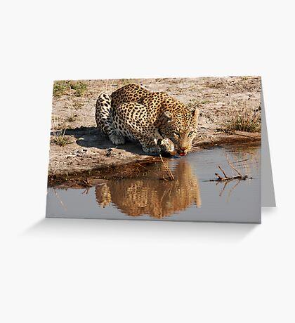 Leopard Reflection 2 - Okavango Delta, Botswana Greeting Card