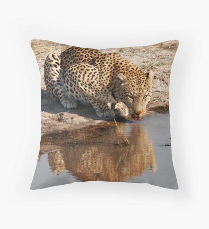 Leopard Reflection 2 - Okavango Delta, Botswana Throw Pillow