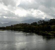 Laune River  by Martina Fagan
