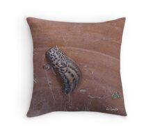 Urn Lodger - Belgium Throw Pillow