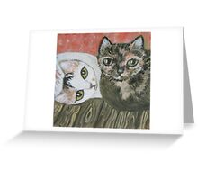 Calico & Tortie Greeting Card