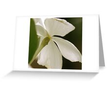 Vintage Vinca Greeting Card
