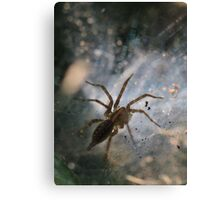 Spiders Lair Canvas Print