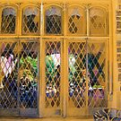 Terrace Doors by Sarah Butcher