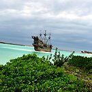 Pirate Boat  by terrebo