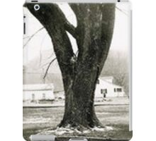 Tennessee Tree iPad Case/Skin
