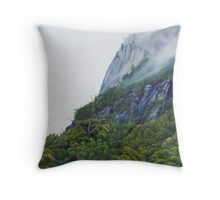 Misty Morning, Pomona Throw Pillow