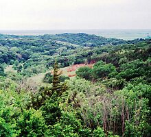 Loess Hills near Moorehead Iowa II by maragoldlady