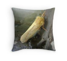 Moth/Butterfly? Throw Pillow