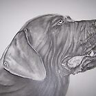Neopolitan Mastiff #2 pencil by perfectpencil